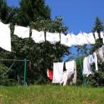 große wäsche 1